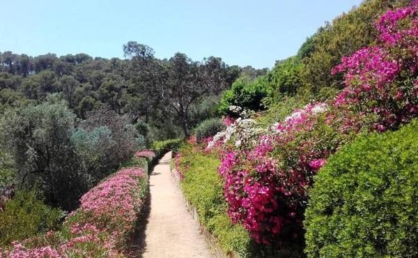 El jardí botànic de Cap Roig